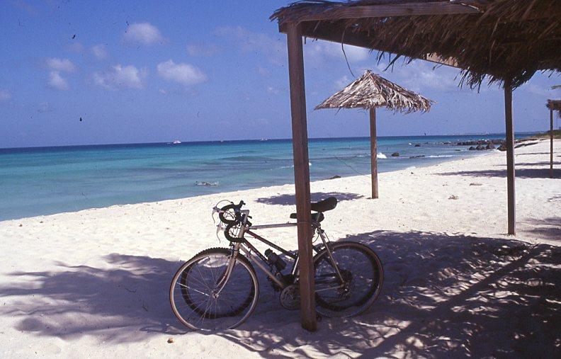 Aruba sonera sarah vermoolen - Strand zwembad zonder grenzen ...